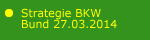 Strategie BKW 2014